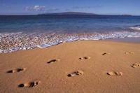 anybody's footprints