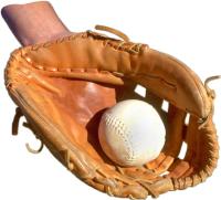ball in glove