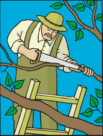 trimming a tree