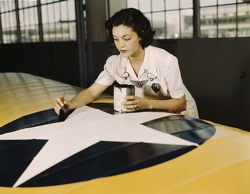 woman painting plane